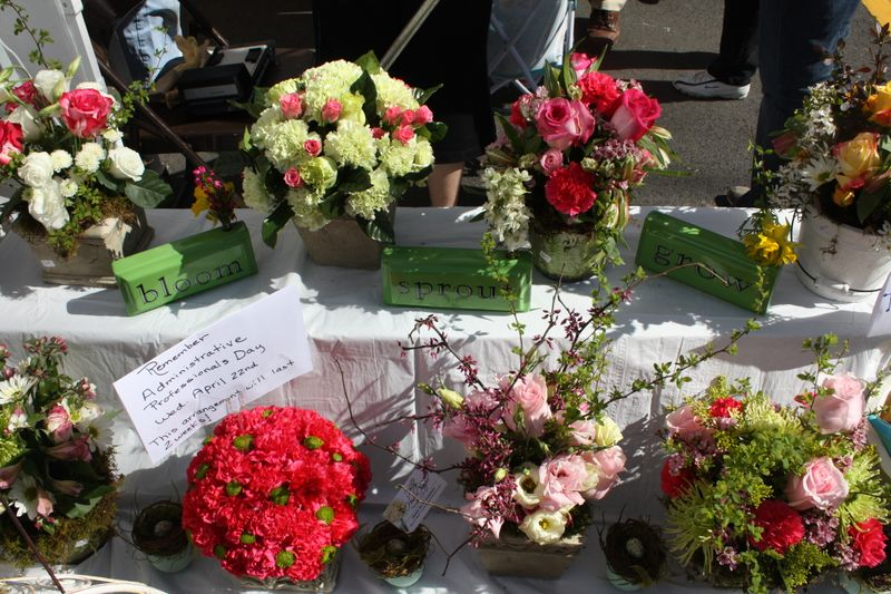 carnations, roses, leesburg flower and garden show