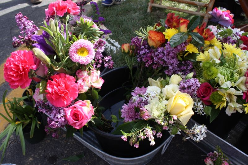 carnations, roses, leesburg flower and garden show, lilac