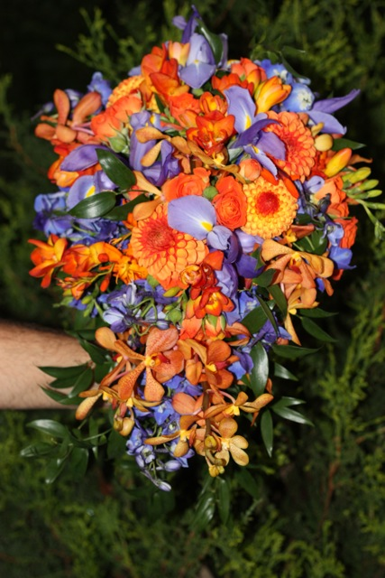 10 12 2009 Orange And Blue Flowers For Michelle At Whitehall Manor In Bluemont