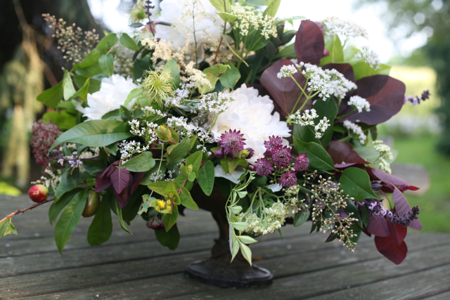 compote centerpiece, smoke bush, astrantia, nandina, white peony, holly chapple