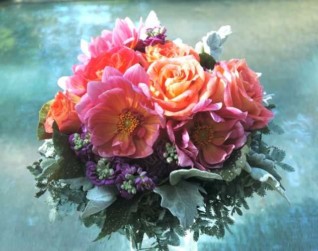 Wedding bouquet by designer Sylvia Clavier, Dream Weavers Flowers - Covington, Louisiana, with coral dahlias, purple stock, orange roses, dusty miller, begonia and acacia foliage