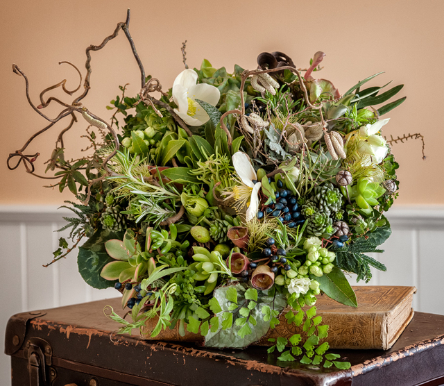 Woodland bridal bouquet by Francoise Weeks - Portland Oregon, with contorted filbert, succulents, hellebores, maidenhair fern, viburnum, cyclamen, and sweet pea tendrils